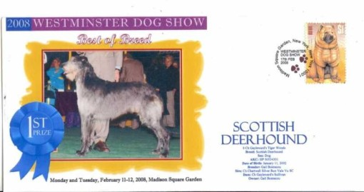 Show: Westminster Dog Show 2008, BOB: Ch. Gayleward's Tiger Woods (Sir: Ch.Chartwell Silver Run Vale Vu SC / Dam: Ch Gayleward's Sullivan), Date of birth: 11/January/2002, Breeder/owner: Gail Bontecou